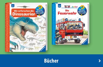 Ravensburger Bücher