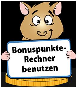 Bonuspunkte-Rechner